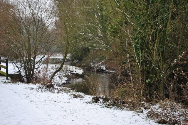 Snowy River Scene